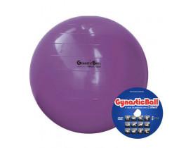 Bola para Exercícios Gynastic Ball -95cm - Roxa - Com Dvd - Ideal para Ginástica Pilates e Yoga
